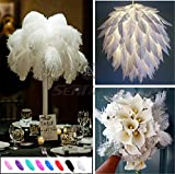 Party Decor Feathers - 10 PCS Natrual Real Ostrich Feathers with Multi Colors DIY Art Decal for Home Wedding Party Ballnight Decoration Hat DIY Scrapbooking Crafting (16-18 inch, White)