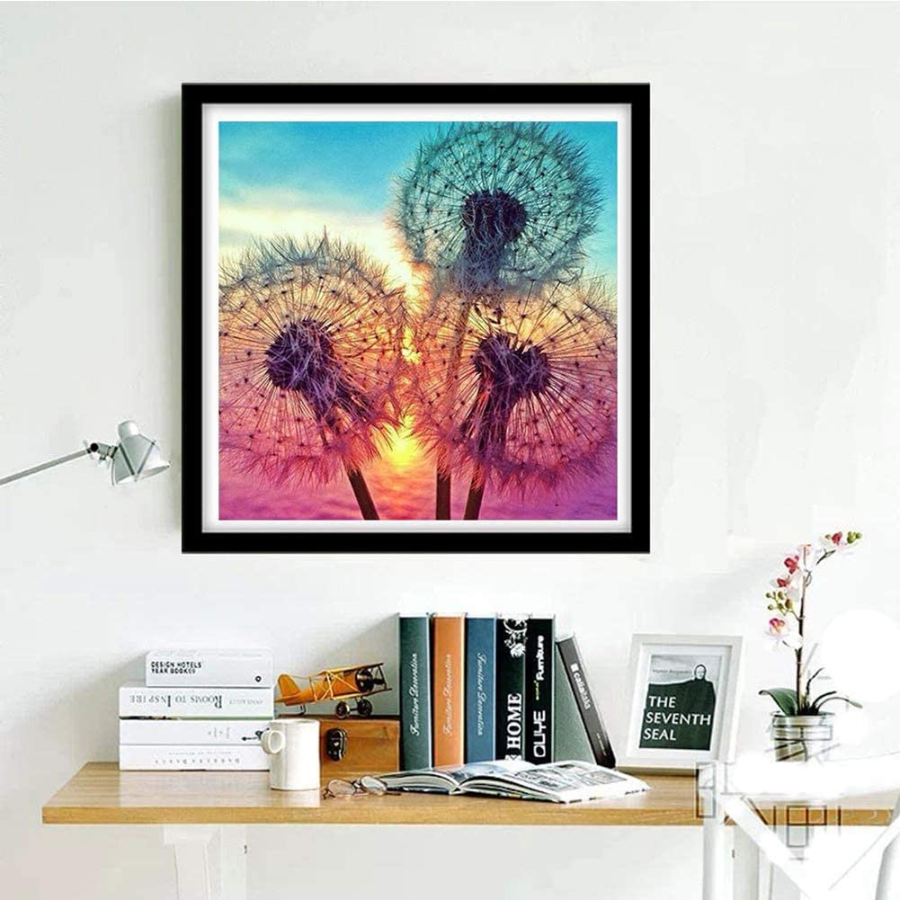 Barbara.xg 2 Pieces Diamond Painting Kit 5D Full Drill Diamond Embroidery Painting DIY Embroidery Cross Stitch Painting for Home Wall Decor