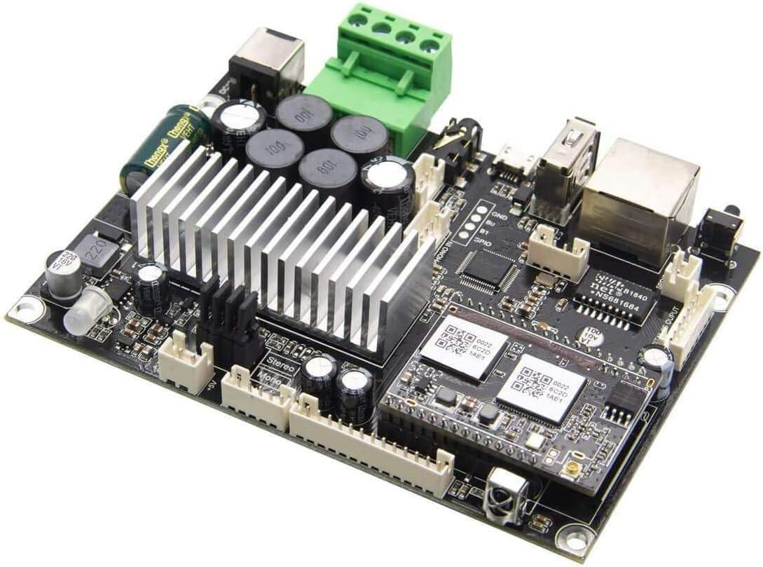 Arylic Amplificador de Audio para el hogar WiFi y Bluetooth 5.0 con Canal estéreo y Mono, de transmisión multizona con Airplay, Spotify Connect para Tablero de Altavoces DIY - Up2stream Amp V4