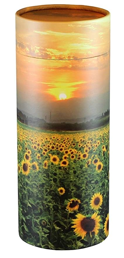 Small Cherished Urns Timber Design Eco-Friendly Scattering Tube