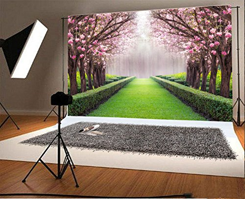 Buy vinyl backdrops 10 by 10