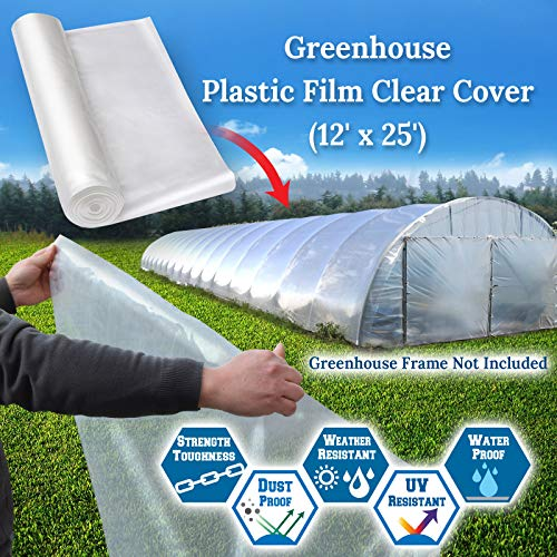 BenefitUSA 12ft X 25ft Clear Plastic Greenhouse Cover 6mil Thicker PE Covering by Benefit-USA (Image #2)