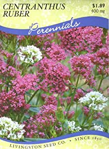 Livingston Seed Co. 6166 Centranthus Ruber Mix (P) Seed Packet