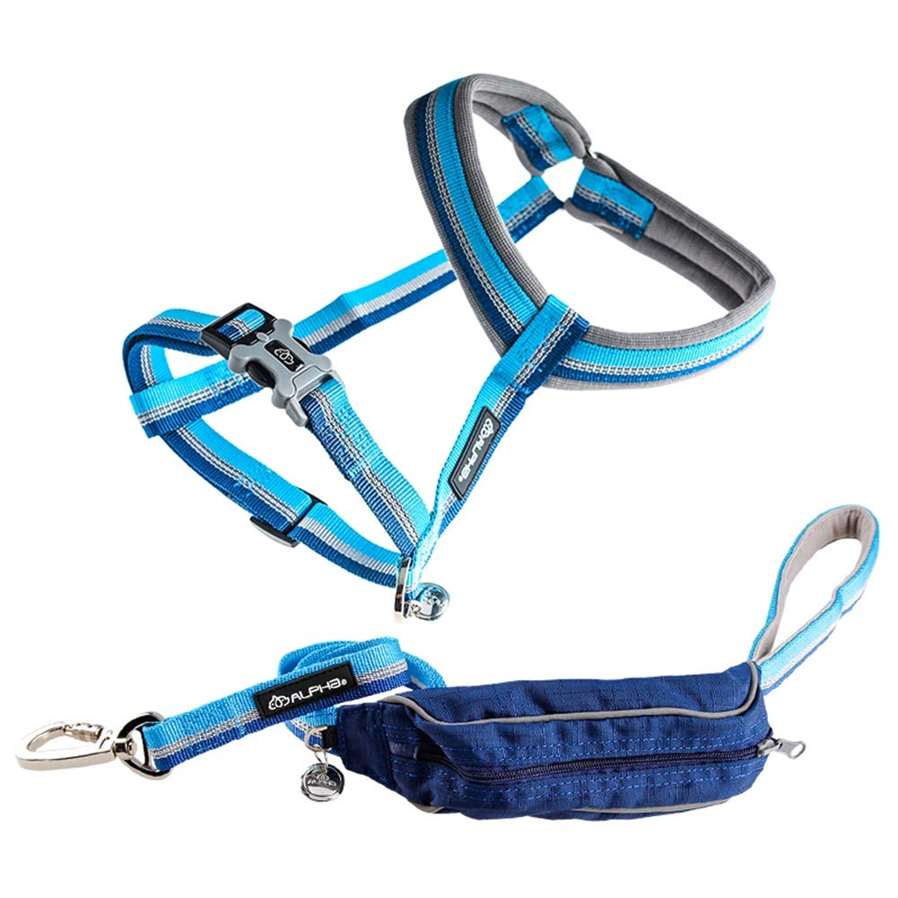 bluee B M bluee B M Dog Leash, Dog Rope Nylon with Capacity Storage Bag for Small Medium and Large Dog Walking Or Running Leash (color   bluee B, Size   M)