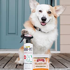 The Missing Link Bundle! Protect Your Dog Inside & Out with SaniPet Sanitizer Spray + Collagen Care Soft Chews