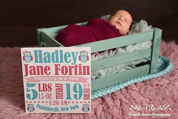 Image Unavailable & Amazon.com: Baby Birth Canvas Personalized Baby Stats Nursery Wall ...
