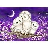 DIY 5D Diamond Painting Kit, Avton Full Drill Animal Cute Owls Rhinestone Embroidery Cross Stitch Supply Arts Crafts…