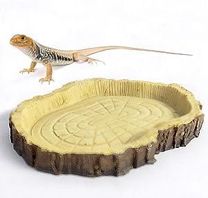 Yagamii Reptile Food Bowl Water Dish,Terrarium Decor Novelty Resin Food Bowls for Chameleon Scorpion Large Tortoise Lizard Frog Snake Young Bearded Dragon Gecko Hermit Crab Tank Habitat