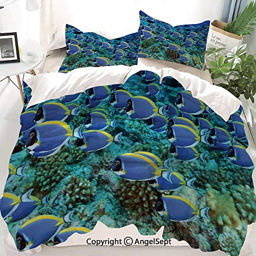 - Homenon Ocean Decor Duvet Cover Set Twin Size,School of Powder Blue Tang Fishes in The Coral Reef Maldives Deep Seas,Decorative 3 Piece Bedding Set with 2 Pillow Shams