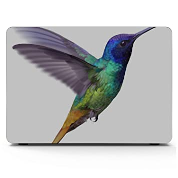 MacBook Pro Case Colorful Beautiful Bird Lightweight Plastic Hard Shell Compatible Mac Air 11 Pro 13 15 MacBook Pro 2018 Accessories Protection for MacBook 2016-2019 Version