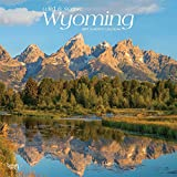 Wyoming, Wild & Scenic 2019 12 x 12 Inch Monthly Square Wall Calendar, USA United States of America Midwest State Nature (Multilingual Edition)