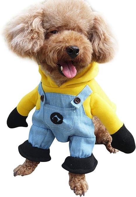 nacoco mascota ropa disfraz Minion Disfraces Ropa para Perro ...