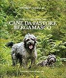 Storia e leggenda del cane da pastore bergamasco