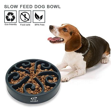 Lenta Feeder Bowl, no Tóxico Respetuoso con el Medio Ambiente Bloat Stop Interactive Fun Puzzle