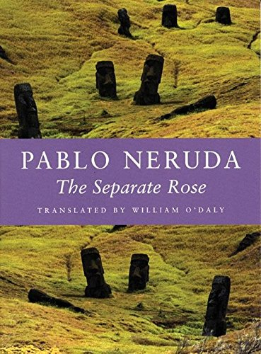 Read Online The Separate Rose (Kage-an Books) (English and Spanish Edition) ebook