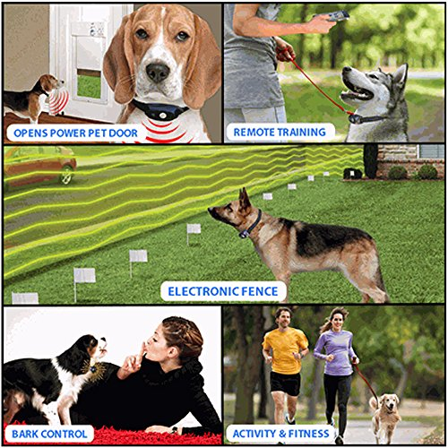 Image of BLUEFANG X-30 5 in 1 Electronic Dog Fence