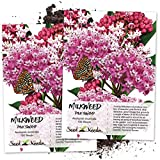 buy Seed Needs, Pink Swamp Milkweed (Asclepias incarnata) Twin Pack of 100 Seeds Each Untreated now, new 2019-2018 bestseller, review and Photo, best price $7.30