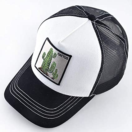 Amazon.com : LZTY Baseball Cap Summer Breathable Mesh Baseball Cap Women Spring Snapback caps Trucker Hats for Men Embroidery Cactus Bone Gorras Visor Hat ...