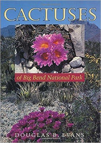 Cactuses of Big Bend National Park