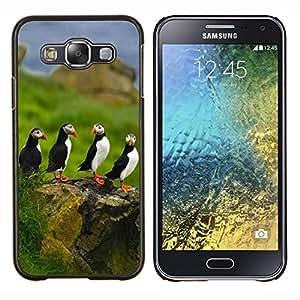 - Bird - - Cubierta del caso de impacto con el patr??n Art Designs FOR Samsung Galaxy E5 E500 Queen Pattern