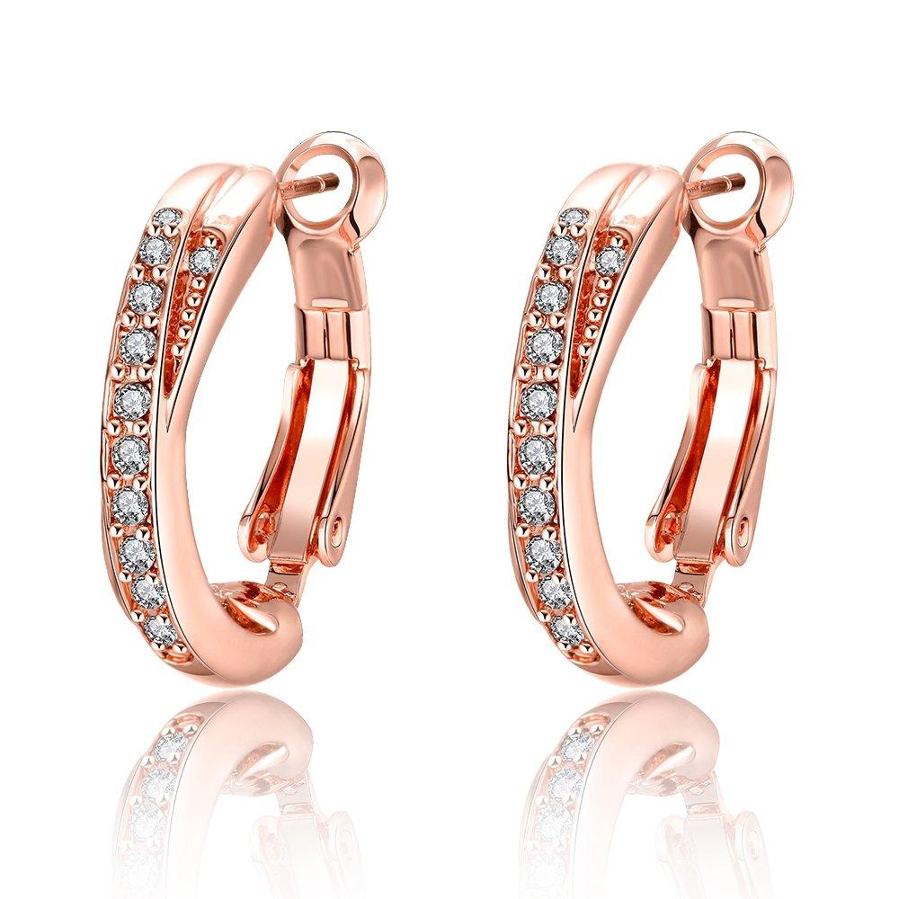Bystar Women Rose Gold Plating with Row Cubic Zirconia Women Circle Hoop Earrings Aries.Goods GE0409