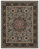 Safavieh Heritage Collection HG736A Grey and Charcoal Area Rug (5′ x 8′) Review