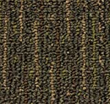 Runner 2.5'x12′ Durango Landscape Indoor Durable Level Loop Area Rug for the Home with Premium BOUND Polyester Edges.
