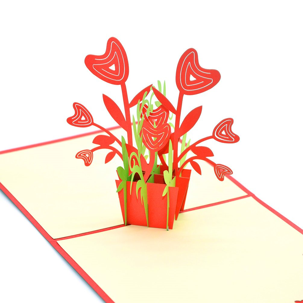 medigy 3d Pop Up Tarjetas de felicitación en blanco tarjetas para más occastions (Flower Pot): Amazon.es: Oficina y papelería