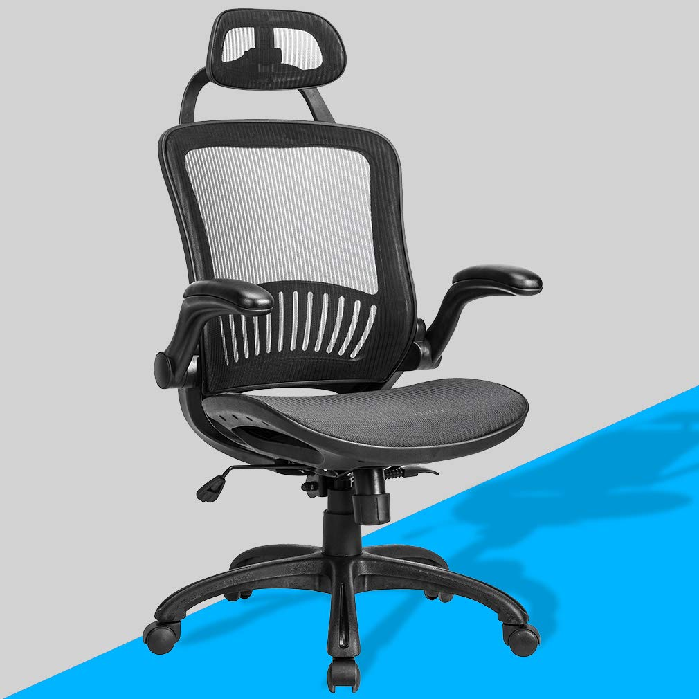 Ergonomic Office Chair Desk Chair Mesh Computer Chair with Lumbar Support Headrest Flip up Arms Executive Task Chair for Adults Women,Black by BestOffice