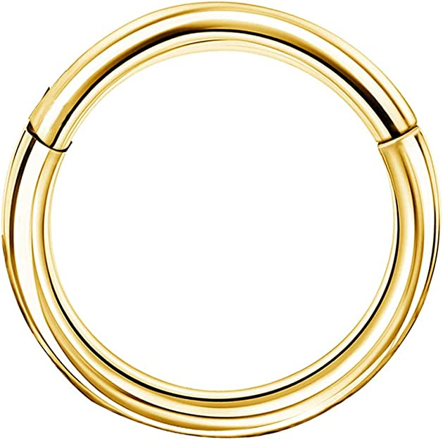 Nose Hinged Ring Clicker 14kt PVD Over 316L Surgical Steel 16g Helix Gold Daith Ring 6,7,8,9 and 10mm Septum Segment ring