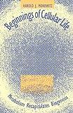 Beginning of Cellular Life: Metabolism Recapitulates Biogenesis