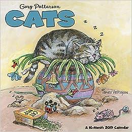 gary pattersons cats wall calendar 2019
