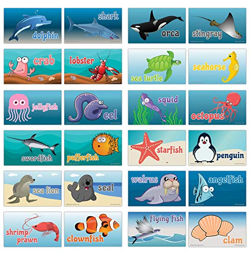 Creanoso Colorful Sea Creatures Flash Cards for Children (120-Pack) - Unique Educational Cards Gift Set - Great Stocking Stuffers Gift for Toddlers, Boys & Girls - Teaching Materials -