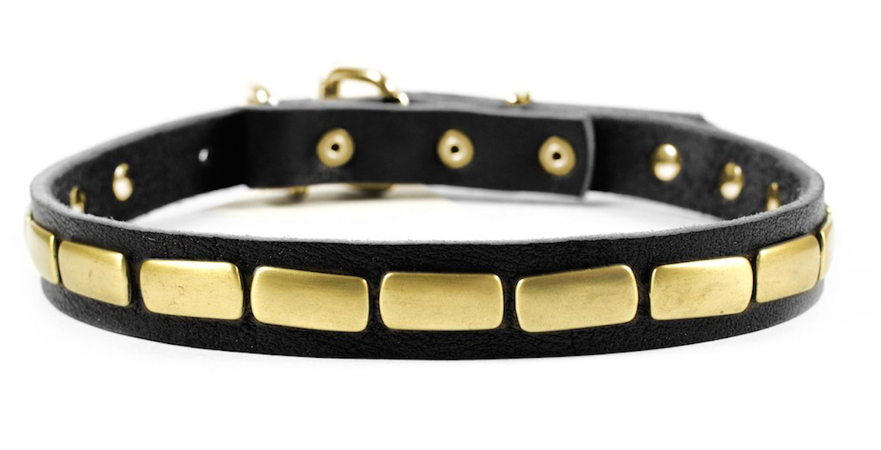 Dean and Tyler  PLATED BEAUTY  Dog Collar Solid Brass Hardware Black Size 76cm x 3cm Width. Fits neck size 28 Inches to 32 Inches.