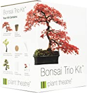 Ecco oggi l'idea per un regalo davvero particolare ed unico, adatto a molteplici occasioni: un bonsai.
