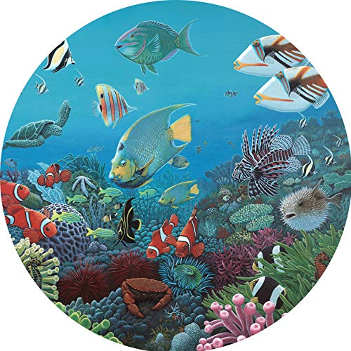 TIRE COVER CENTRAL Reef Fish Wonders of The Sea Spare Tire Cover for 255/75R17 fits Camper, Jeep, RV, Scamp, Trailer(Drop Down Size menu