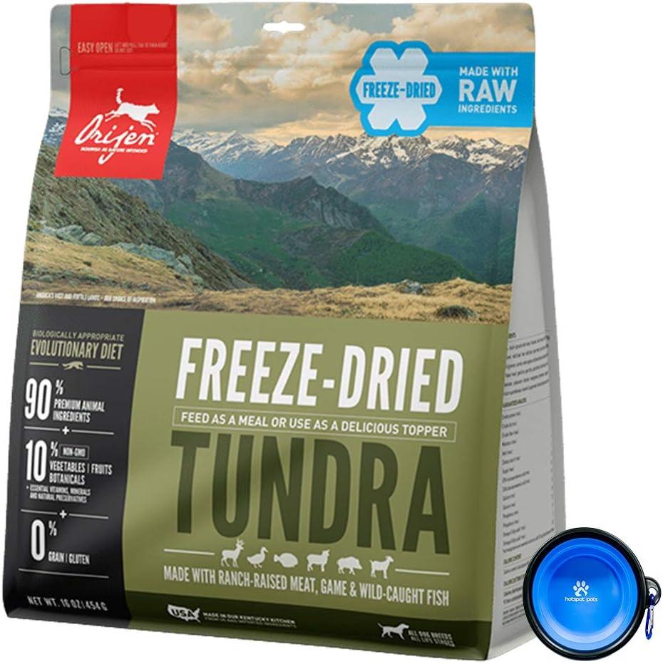 Orijen Freeze Dried Dog Food Snacks, Freeze-Dried Raw 16-Ounce Bag with Hot Spot Pets Food Bowl - Made in USA (Tundra)