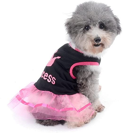 Zunea Corona Princesa Pequeño Perro Gato Tutu Vestido de Encaje Camisa de Algodón Malla Mascota Cachorro Sundress Beachwear Transpirable Verano Ropa Rosa Blanco: Amazon.es: Productos para mascotas