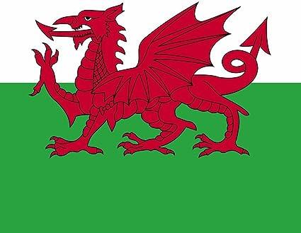 Buff Junior Multifunction Headwear Welsh Flag Design Wales motifs. Cymru