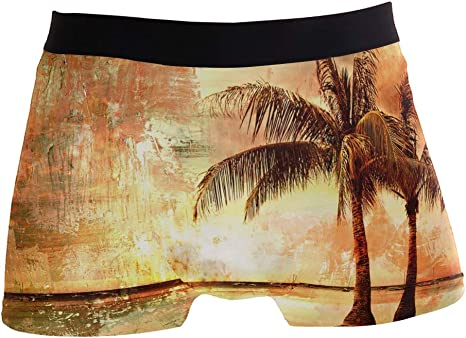 Hipster Unique Tropical Sunset Artwork Painting StyleBoxer Briefs Mens Underwear Boys Breathable Stretch Low Rise Trunks