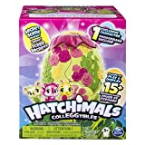 Hatchimals - Secret Scene Playset for Hatchimals CollEGGtibles (Styles May Vary), Ages 5 & Up