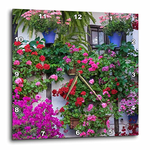 3dRose Danita Delimont - Flowers - Spain, Andalusia. Cordoba. Flowers during the Festival of the Patio. - 15x15 Wall Clock (dpp_277892_3) by 3dRose