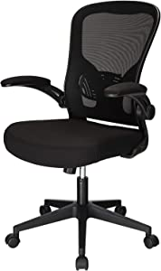 OUTFINE Office Task Desk Swivel Chair with Flip-up Arms, Adjustable Lumbar Support and Adjustable Height (Black)