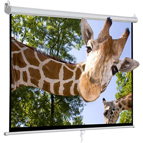 "100"" Projector Screen, 100 Inch Diagonal Manual Pull Down Sc"