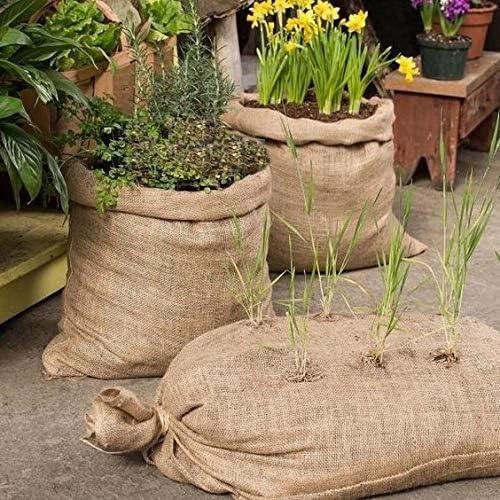 BlendNature Sacos de Yute Grande de Café Reciclados (4): Amazon.es ...