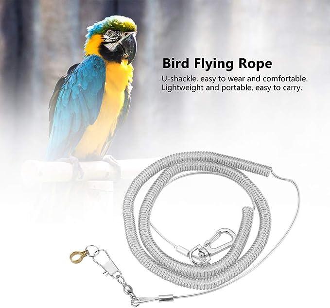 6M Parrot Bird Anti-Bite Flying Training Cuerda Kits De Correas ...