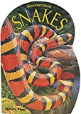 img - for Snakes (Misunderstood) book / textbook / text book
