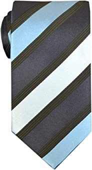 Remo Sartori Made in Italy Men's Striped Regimental Necktie, 3,14'' Width, Silk