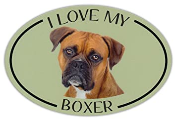 Oval Dog Breed Picture Car Magnet - I Love My Boxer - Magnetic Bumper  Sticker