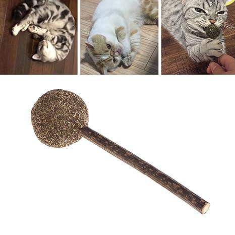Yanhonin 1pc Catnip Lollipop Juguete – Bola de Hierba de Gato – Nepeta Cataria – Bio